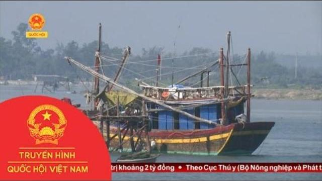 Thời sự -Quảng Trị: Cần Khẩn Cấp Nạo Vét Luồng Lạch Cảng Cửa Tùng