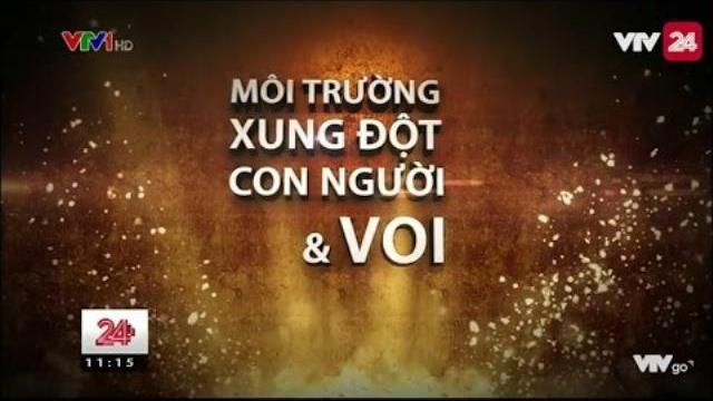 Tin Tức VTV24 - Ngày 04/04/2017: Tiêu Điểm Môi Trường – Xung Đột Giữa Người Và Voi