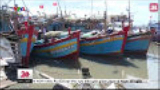 Vũng Tàu: Ô Nhiễm Cửa Biển Do Tình Trạng Xả Rác Bừa Bãi - Tin Tức VTV24