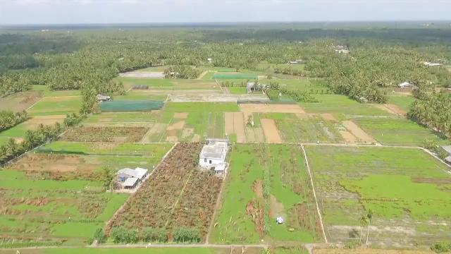 Tin Thời Sự Hôm Nay (18h30 - 12/3/2017): Chính Phủ Thống Nhất Mở Rộng Hạn Điền, Tích Tụ Ruộng Đất