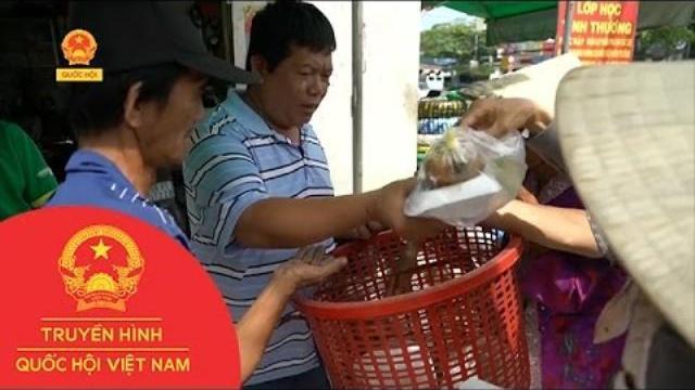 Sắc Màu Của Phố - Tiệm sửa xe đặc biệt giữa lòng Sài Gòn