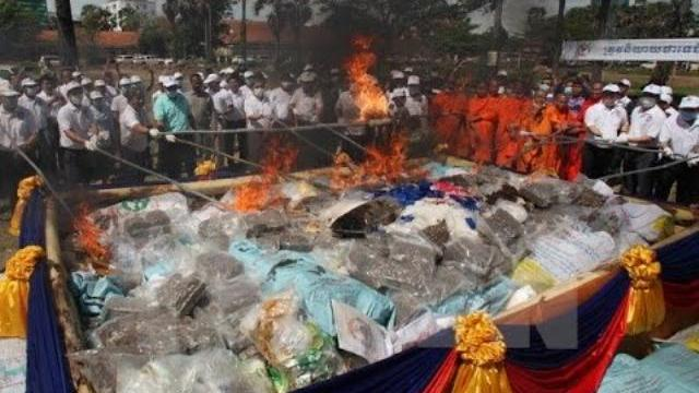"""Tiêu hủy tàn dư """"đế chế"""" ma túy Tàng Keangnam"""