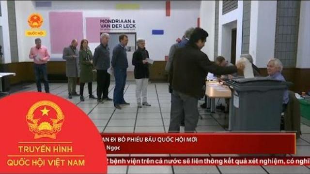 Thời sự - Cử tri Hà Lan đi bỏ phiếu bầu Quốc hội mới