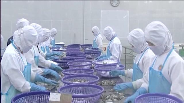 Tin Tức 24h Mới Nhất: Doanh nghiệp thủy sản đề xuất giảm phí