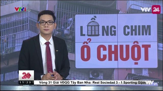 Tiêu điểm: Chuồng chim - ổ chuột | VTV24