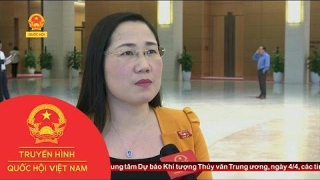 Thời sự - Phỏng vấn bên lề về Luật trách nhiệm bồi thường nhà nước (sửa đổi)