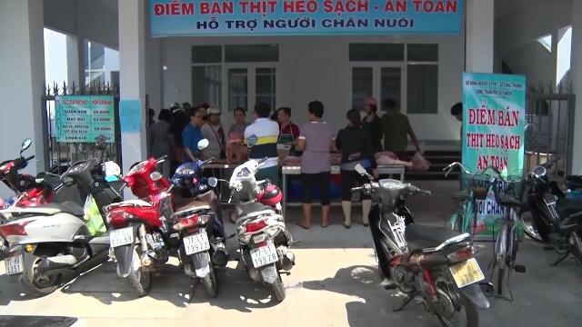 Bình Định triển khai các điểm bán thịt heo sạch, hỗ trợ người nuôi heo