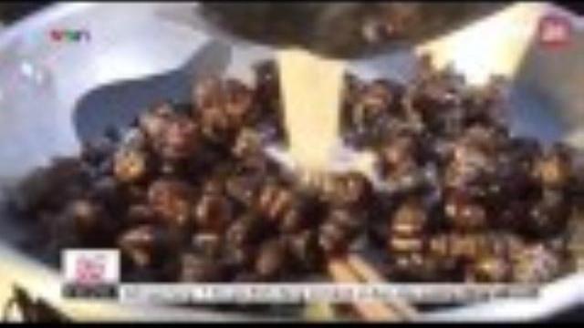 Ốc len - đặc sản rừng đước | VTV24