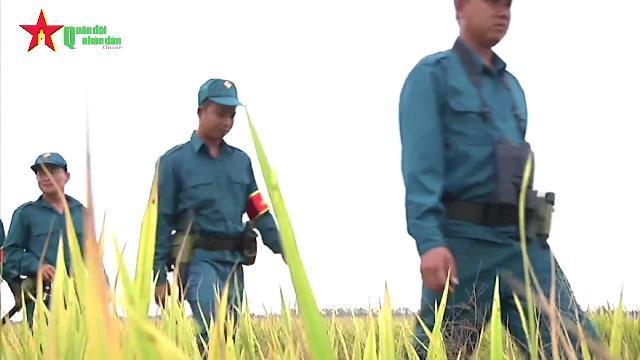 Dân quân tự vệ: Lực lượng vũ trang độc đáo của Việt Nam
