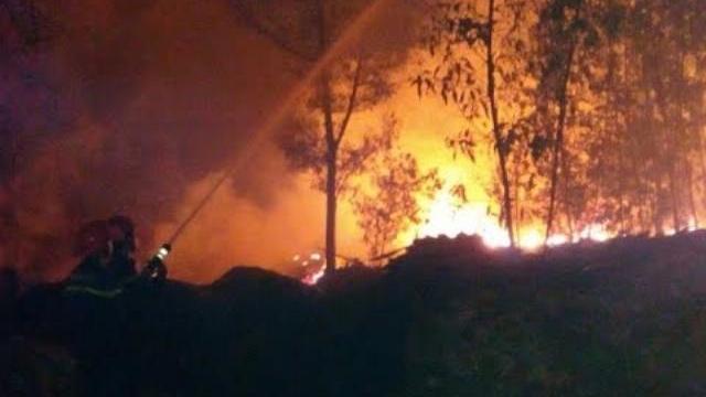 Clip: Sặc sụa dầu nhớt trong đám cháy kinh hoàng ở Đồng Nai