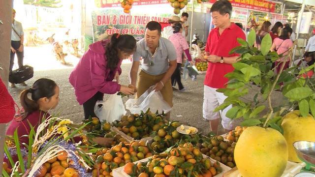 Hòa Bình nhân rộng mô hình HTX để phát triển nông nghiệp bền vững