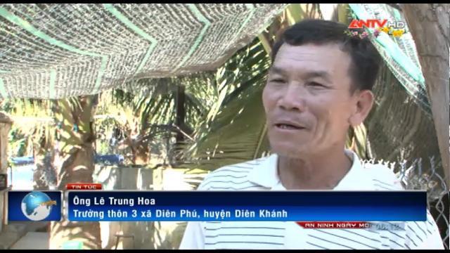 An ninh ngày mới ngày 02.02.2017 - Làm giàu từ mô hình nuôi gà Đông Tảo tại Khánh Hòa