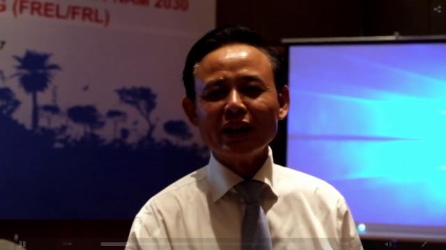 Xử lý nghiêm vụ phá rừng phòng hộ ở Phú Yên