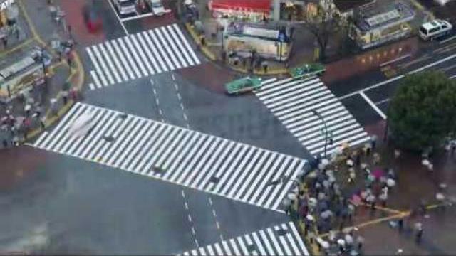 Văn hóa giao thông tại ngã tư Shibuya Crossing, Tokyo Nhật Bản