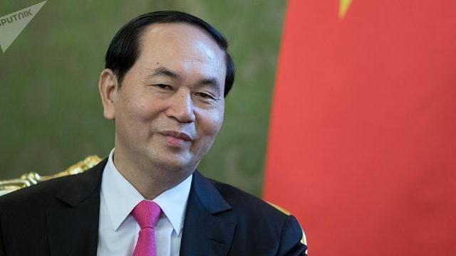 Chủ tịch nước Trần Đại Quang trả lời báo chí nhân dịp kỷ niệm Việt Nam gia nhập LHQ