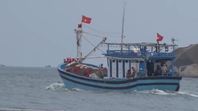 Phú Yên phát triển nhanh các mô hình hoạt động đánh bắt trên biển