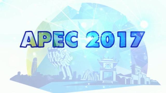 Việt Nam với APEC 2017