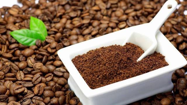 Nông dân Lâm Đồng phân loại cà phê tỉ mỉ bằng tay như thế nào