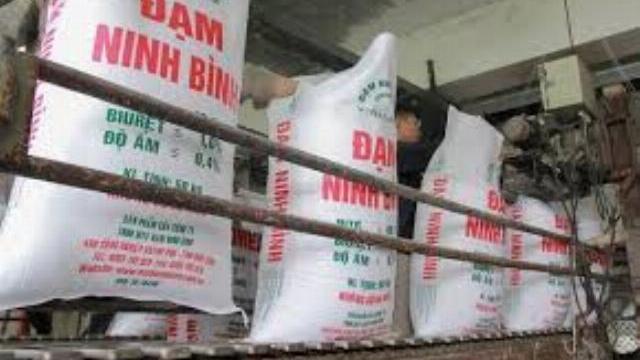 Đạm Ninh Bình tái sản xuất sau 6 tháng 'đắp chiếu'