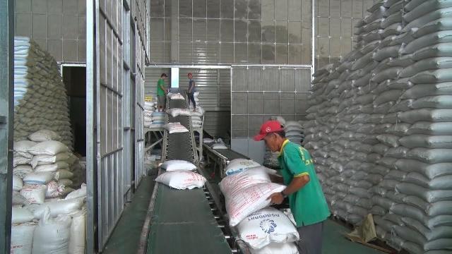 Nghị định 107 của Chính phủ cởi trói cho xuất khẩu gạo