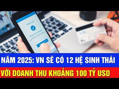 McKinsey: Việt Nam sẽ có 12 hệ sinh thái với doanh thu 100 tỷ USD vào 2025