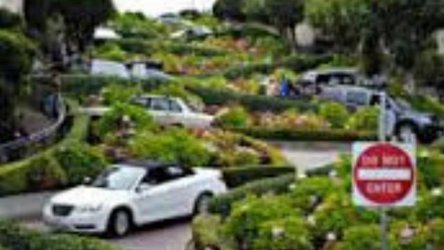 Du khách lái xe trên con phố khúc khuỷu nhất thế giới
