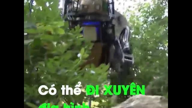 Robot hành quân, chuyển đồ hình chú chó