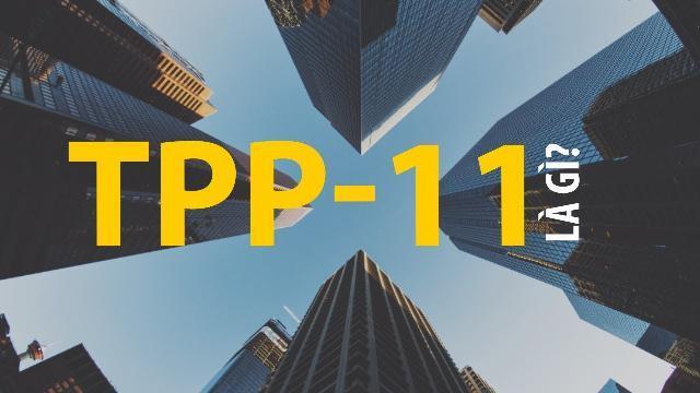 Mỹ rút đi, TPP-11 là gì?