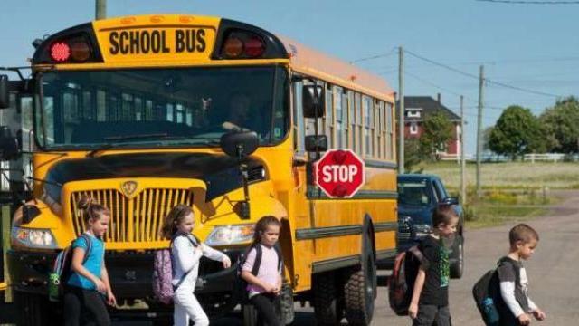 CLIP: Ô tô tất cả các phía đều dừng lại khi xe bus trả học sinh về nhà