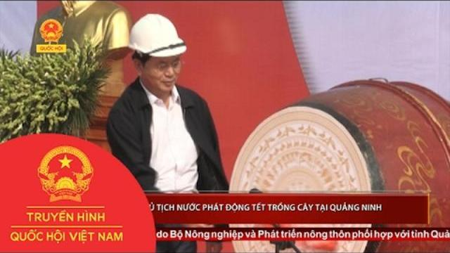 Chủ tịch nước Trần Đại Quang phát động Tết trồng cây tại Quảng Ninh