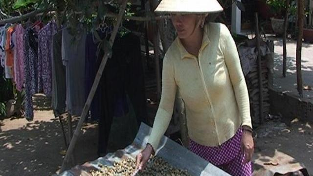Hến phơi một nắng - món ăn lạ ở An Giang