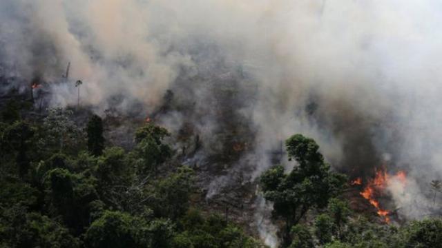 [VIDEO] Rừng Amazon cháy lớn, khói phủ đen bầu trời nhiều thành.mp4