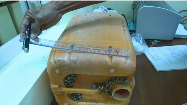Can nhựa có chứa hàng chục bánh heroin được tìm thấy trên biển