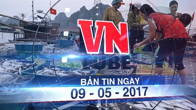 Bản tin VnTube ngày 09-05-2017: Quảng Bình áp giá bồi thường hải sản tồn kho vụ Formosa