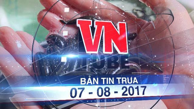 Bản tin VnTube trưa 07-08-2017: Đỉa nhiều bất thường, dân rùng mình hoảng sợ