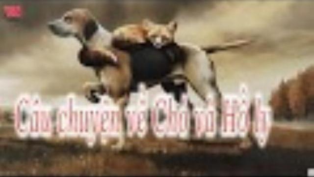 Câu chuyện về Chó và Hồ ly