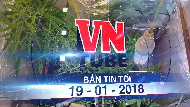 Bản tin VnTube tối ngày 19-01-2018: Bắt người nước ngoài trồng cần sa trong nhà tại Vũng Tàu