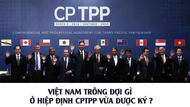 Việt Nam trông đợi gì ở Hiệp định CPTPP vừa được ký ?