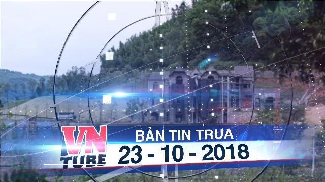 Bản tin VnTube trưa 23-10-2018: Bắt đầu thanh tra toàn diện vụ 'xẻ thịt' đất rừng Sóc Sơn
