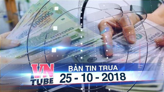 Bản tin VnTube trưa 25-10-2018: Đại biểu Quốc hội nói về vụ 'Đổi 100 USD phạt 90 triệu đồng'