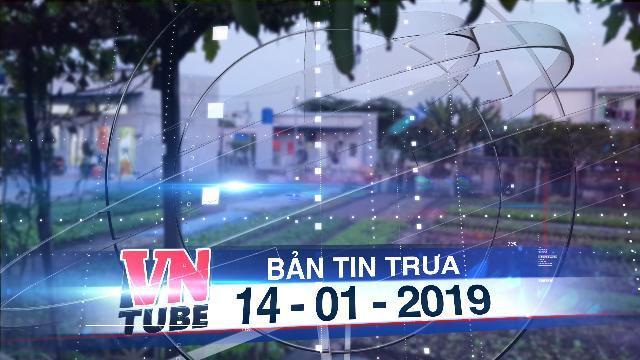 Bản tin VnTube trưa 14-01-2019: Hỗ trợ hơn 7 triệu đồng/m2 đất khu vườn rau Lộc Hưng