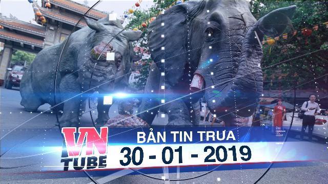 Bản tin VnTube trưa 30-01-2019: Mô hình tê giác, voi quỳ 'kêu cứu' ở sân chùa