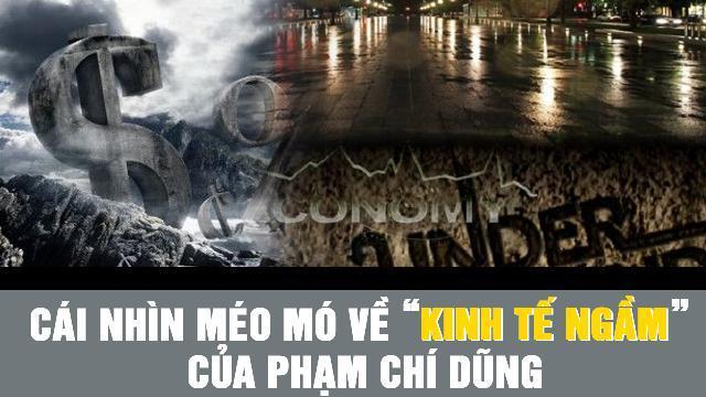 """Cái nhìn méo mó về """"kinh tế ngầm"""" của Phạm Chí Dũng"""