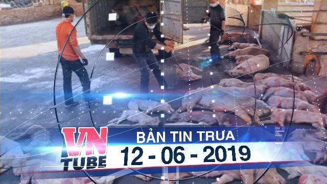 Bản tin VnTube trưa 12-06-2019: Ổ dịch tả heo châu Phi đầu tiên ở TP.HCM đã xuất hiện