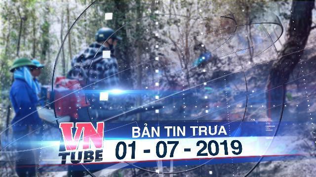 Bản tin VnTube trưa 01-07-2019: Sau Hà Tĩnh đến lượt rừng thông ở Quảng Bình bốc cháy