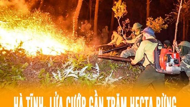 Hà Tĩnh: Lửa cướp gần trăm hecta rừng, nhưng không thể thêu cháy tình quân dân