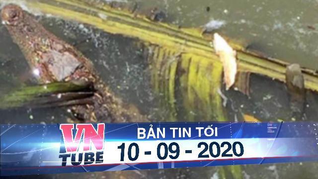 Cảnh báo cá sấu xuất hiện trên sông Sài Gòn