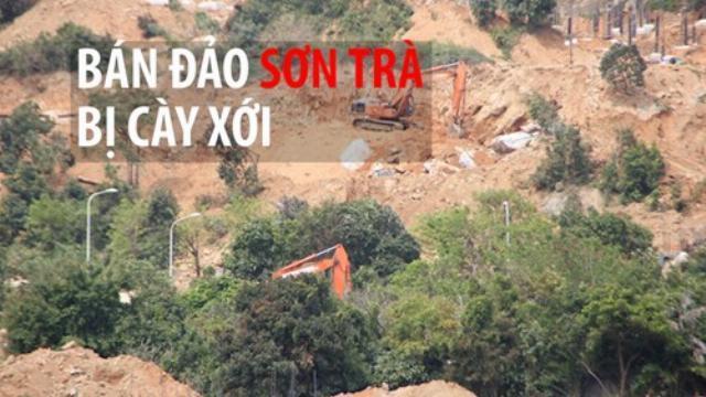 Bán đảo Sơn Trà bị cày xới một diện tích lớn