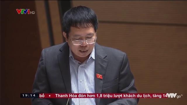 Quốc hội thảo luận dự luật bảo về và phát triển rừng sửa đổi