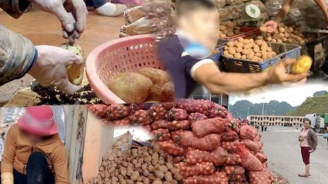 Phóng sự điều tra đường đi nông sản Trung Quốc biến thành hàng Đà Lạt